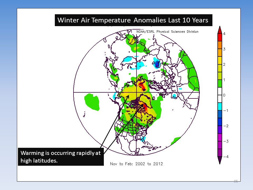 Winter Air Temperature Anomalies Last 10 Years Warming is occurring rapidly at high latitudes. 35