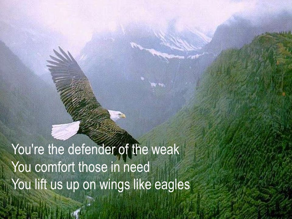 You re the defender of the weak You comfort those in need You lift us up on wings like eagles