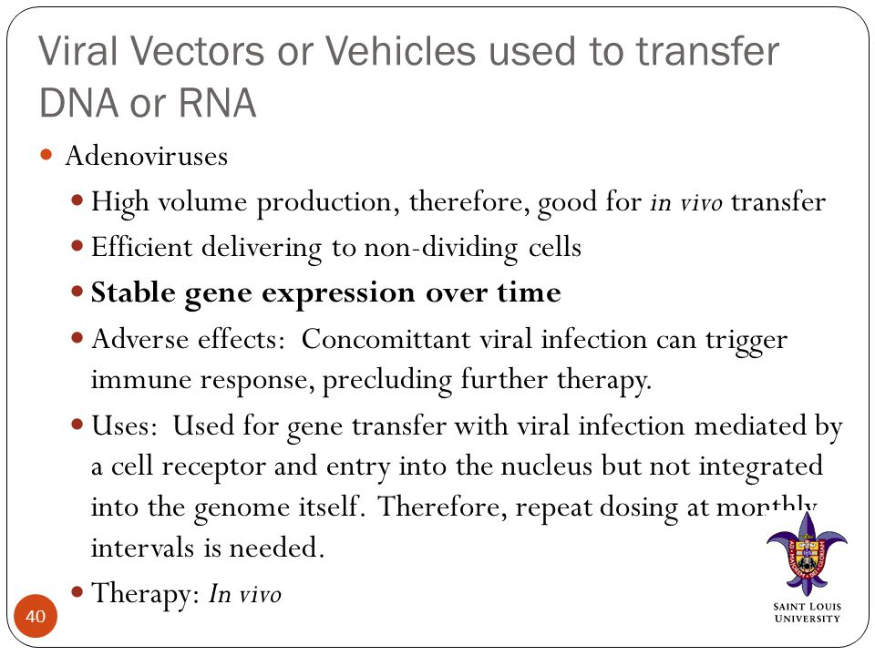 Viral Vectors or Vehicles used to transfer DNA or RNA Adenoviruses High volume production, therefore, good for in vivo transfer Efficient delivering to non-dividing cells Stable gene expression over time Adverse effects: Concomittant viral infection can trigger immune response, precluding further therapy.