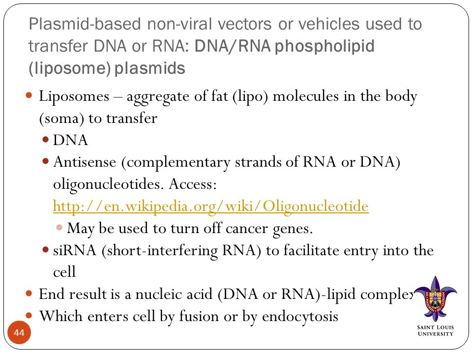 Plasmid-based non-viral vectors or vehicles used to transfer DNA or RNA: DNA/RNA phospholipid (liposome) plasmids Liposomes – aggregate of fat (lipo) molecules in the body (soma) to transfer DNA Antisense (complementary strands of RNA or DNA) oligonucleotides.