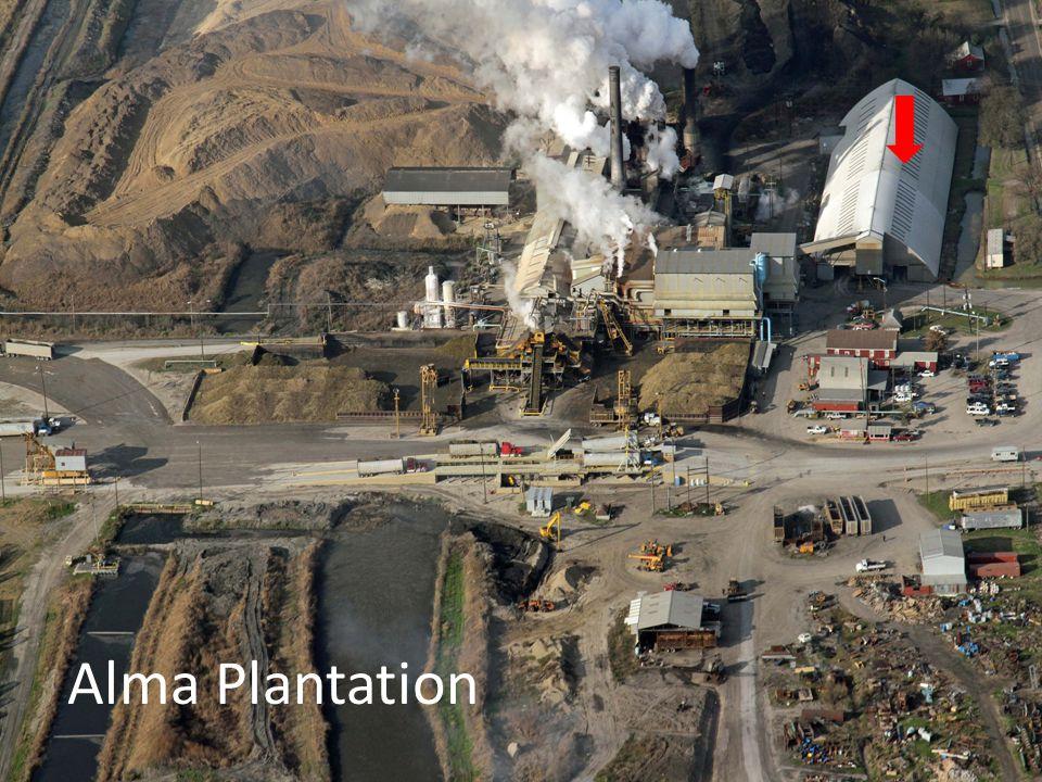 Alma Plantation