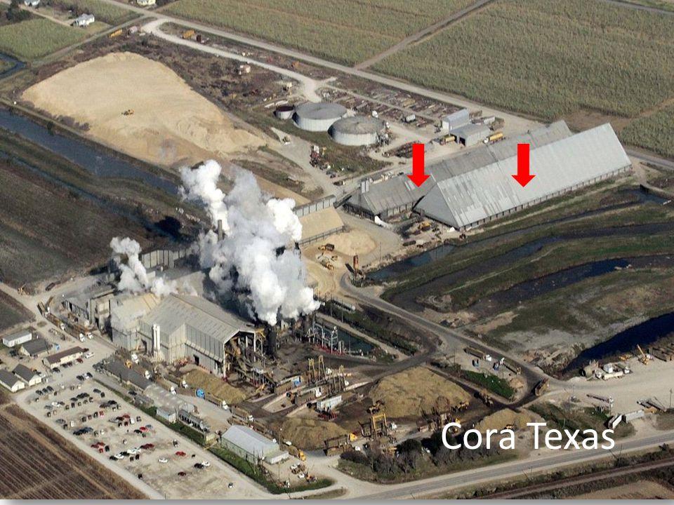 Cora Texas