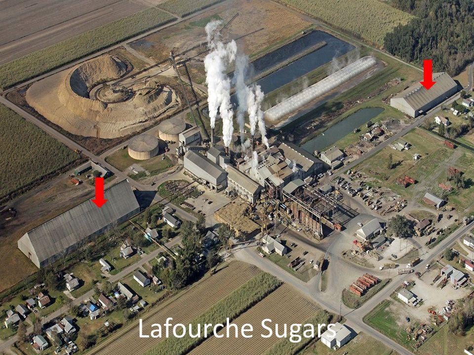 Lafourche Sugars