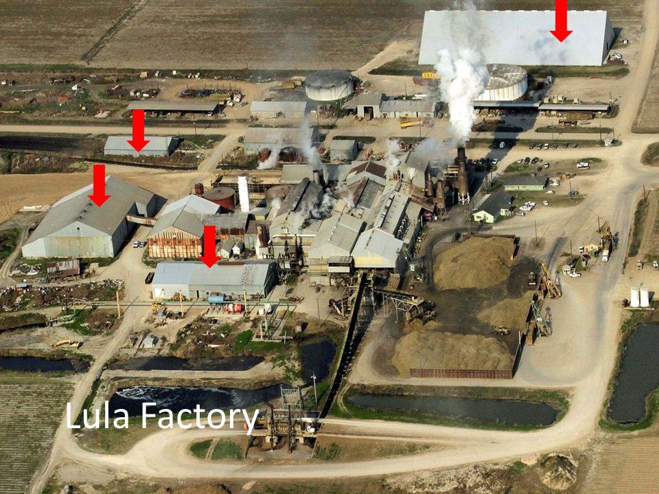 Lula Factory