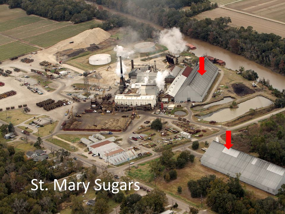 St. Mary Sugars