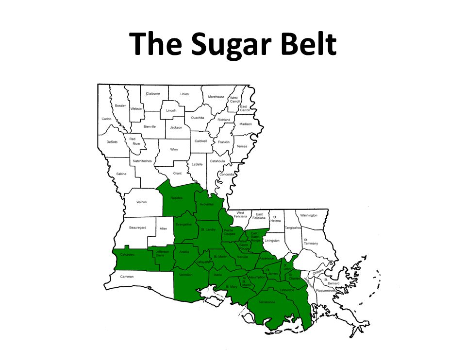 The Sugar Belt
