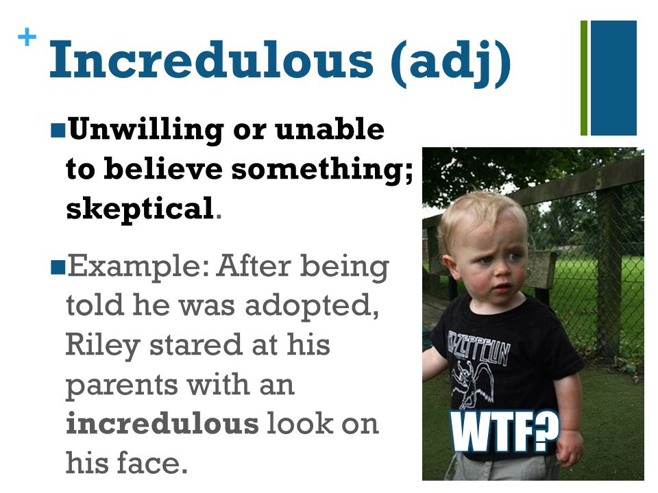 + Incredulous (adj) Unwilling or unable to believe something; skeptical.