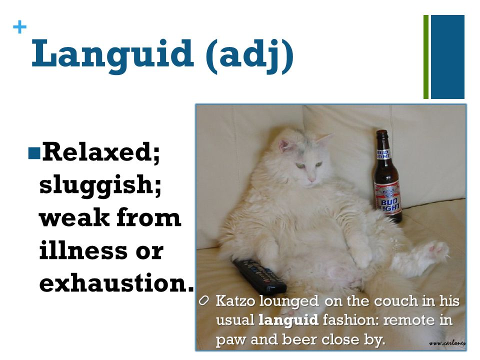 + Languid (adj) Relaxed; sluggish; weak from illness or exhaustion.