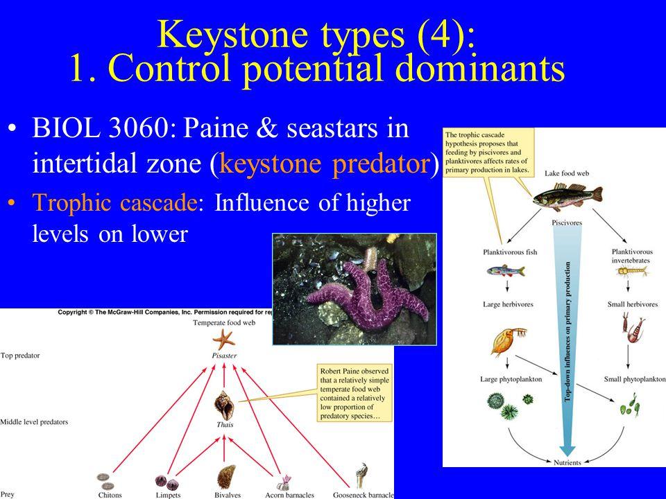 Keystone types (4): 1.