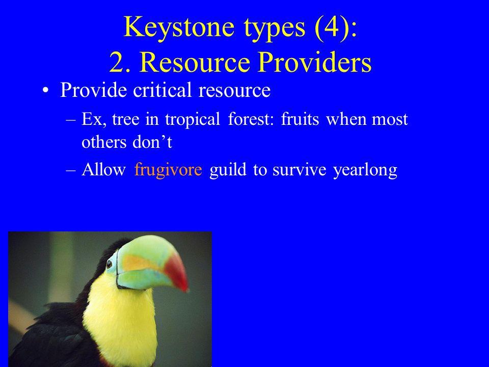 Keystone types (4): 2.