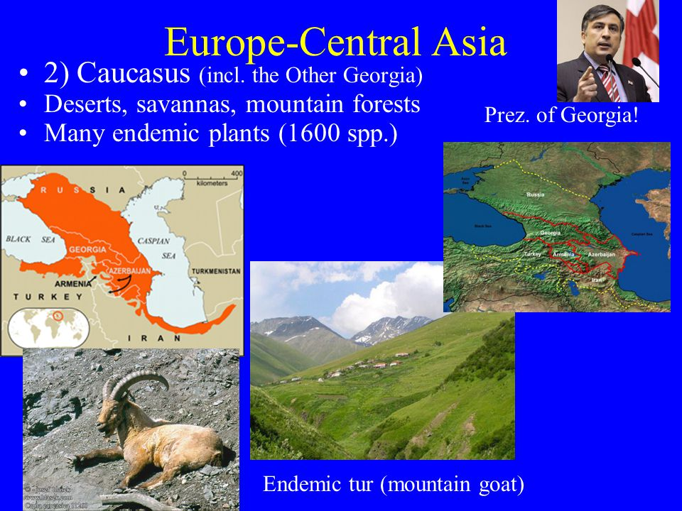 Europe-Central Asia 2) Caucasus (incl.