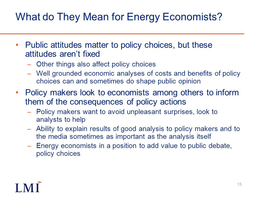 What do They Mean for Energy Economists.