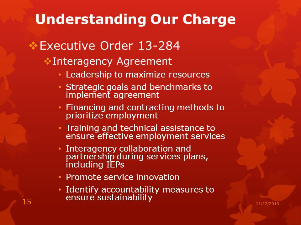 Understanding Our Charge  Executive Order  Interagency Agreement Leadership to maximize resources Strategic goals and benchmarks to implement agreement Financing and contracting methods to prioritize employment Training and technical assistance to ensure effective employment services Interagency collaboration and partnership during services plans, including IEPs Promote service innovation Identify accountability measures to ensure sustainability 15 11/12/2013