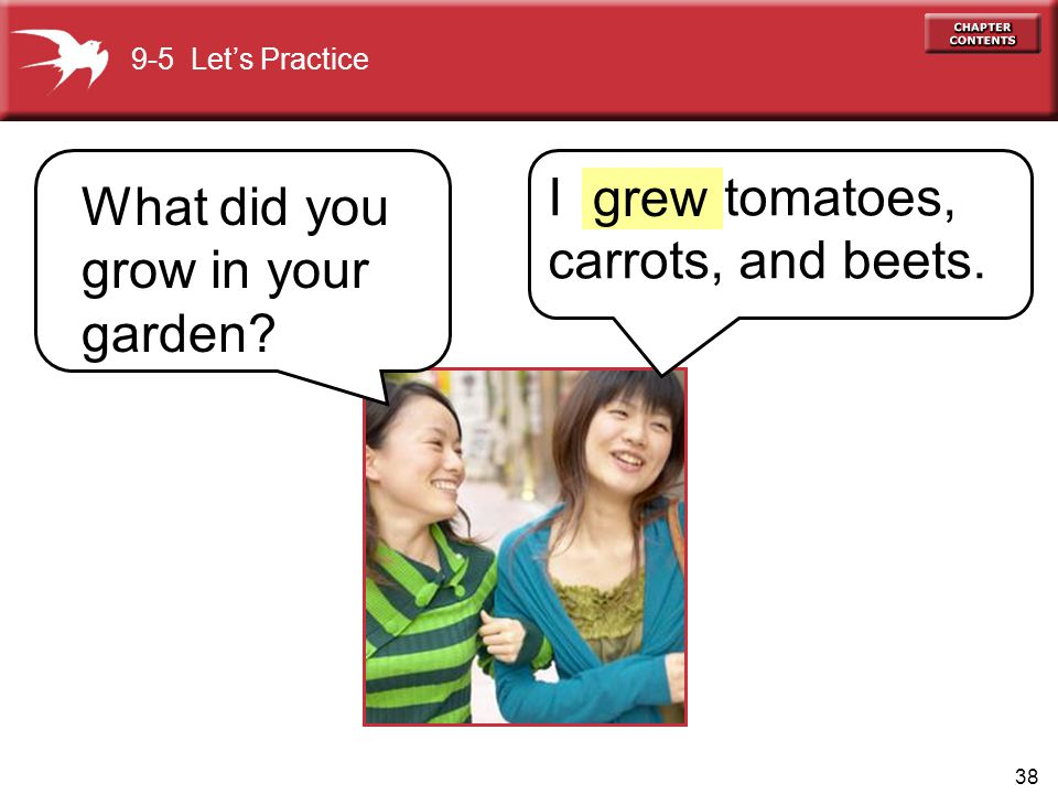 38 I tomatoes, carrots, and beets. What did you grow in your garden? 9-5 Let's Practice grew