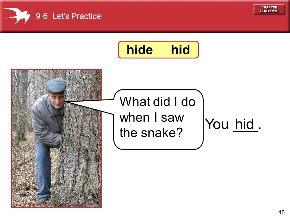 45 9-6 Let's Practice What did I do when I saw the snake? You ___.hid hide hid