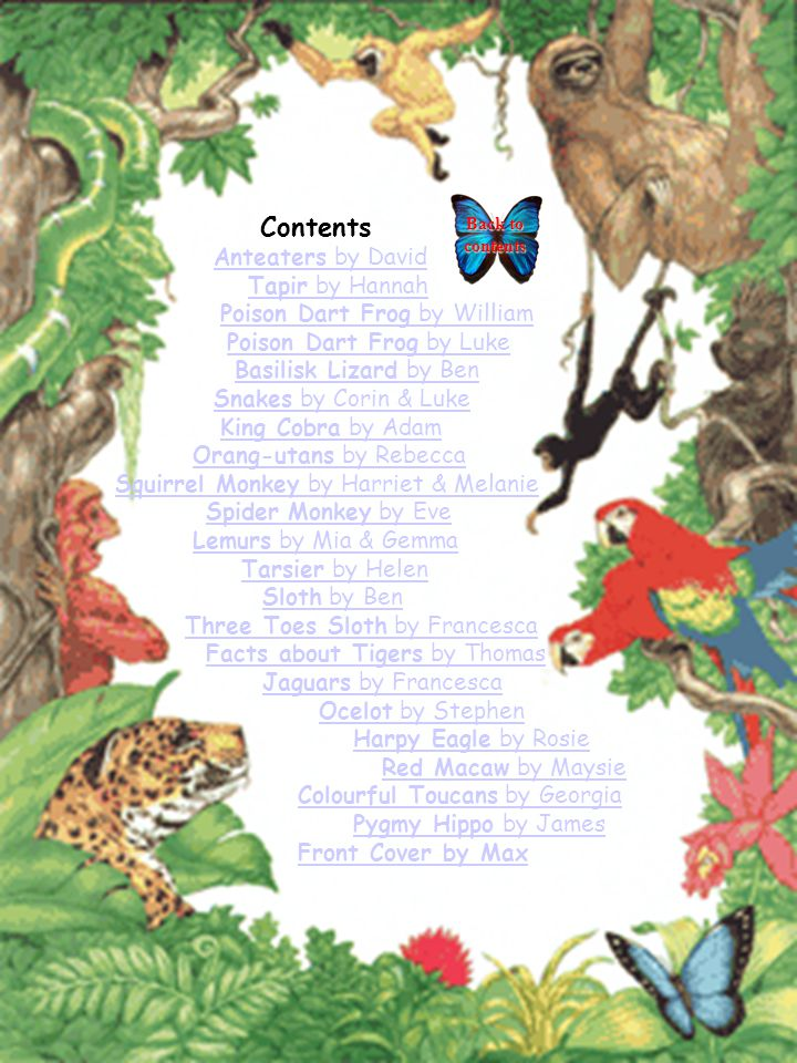 Contents Anteaters by DavidAnteaters by David Tapir by HannahTapir by Hannah Poison Dart Frog by WilliamPoison Dart Frog by William Poison Dart Frog by LukePoison Dart Frog by Luke Basilisk Lizard by BenBasilisk Lizard by Ben Snakes by Corin & LukeSnakes by Corin & Luke King Cobra by AdamKing Cobra by Adam Orang-utans by RebeccaOrang-utans by Rebecca Squirrel Monkey by Harriet & Melanie Spider Monkey by EveSpider Monkey by Eve Lemurs by Mia & GemmaLemurs by Mia & Gemma Tarsier by HelenTarsier by Helen Sloth by BenSloth by Ben Three Toes Sloth by FrancescaThree Toes Sloth by Francesca Facts about Tigers by ThomasFacts about Tigers by Thomas Jaguars by FrancescaJaguars by Francesca Ocelot by StephenOcelot by Stephen Harpy Eagle by RosieHarpy Eagle by Rosie Red Macaw by MaysieRed Macaw by Maysie Colourful Toucans by GeorgiaColourful Toucans by Georgia Pygmy Hippo by JamesPygmy Hippo by James Front Cover by Max Back to contents Back to contents