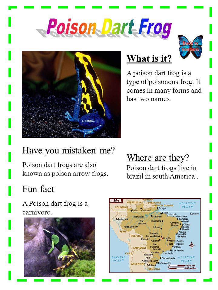 What is it. A poison dart frog is a type of poisonous frog.