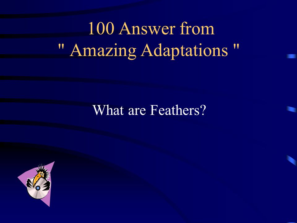 100 Question from Amazing Adaptations This special feature of birds is shared by no other animal.