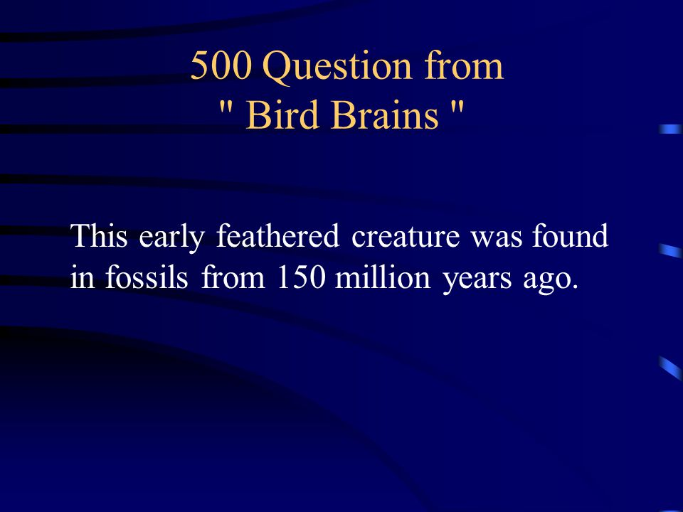 400 Answer from Bird Brains What is the Arctic Tern 27,000 miles annually