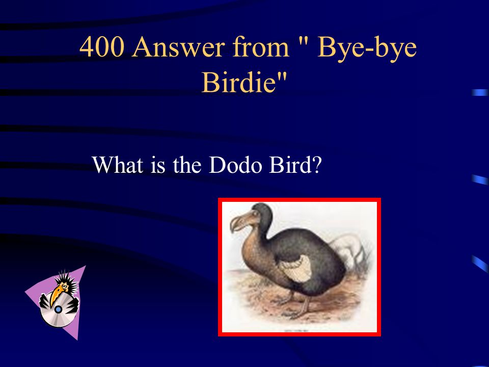 400 Question from Bye-bye Birdie Named for it's lack of fear of humans and stupidity, this bird was rapidly driven to extinction by humans.