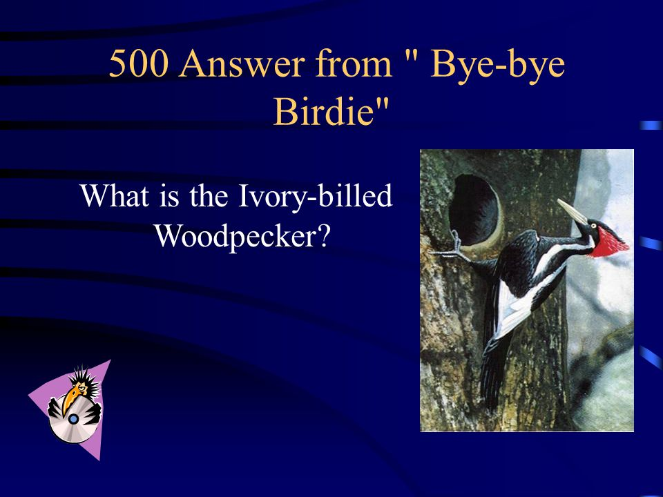 500 Question from Bye-bye Birdie Often called the Lord God Bird , this largest of North America's Woodpeckers once nested in Georgia's swamps, but is now extinct.