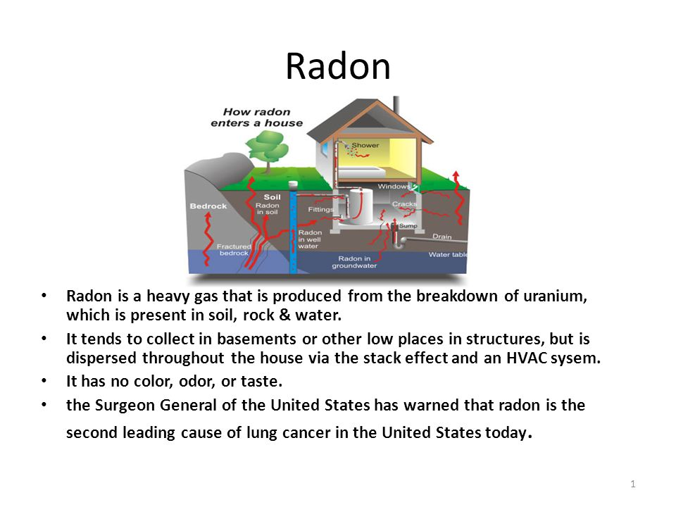 Meanwhile inhabitants of buildings where there is a radon problem can be protected against inhalation of damaging radioactive elements if a phytofilter is installed since it contains plants which will absorb radioactive material.