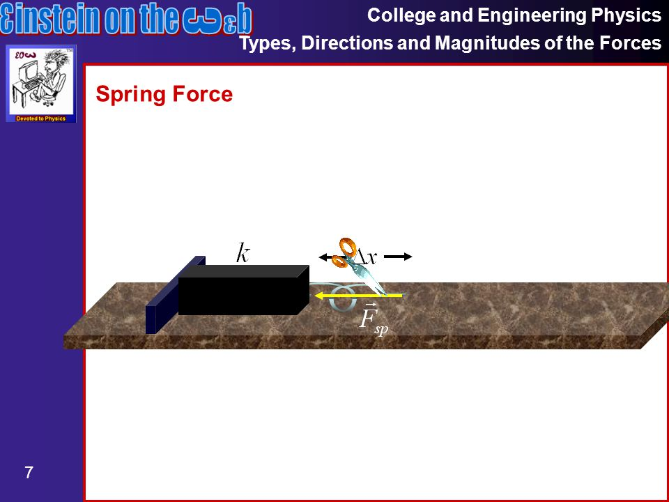 College and Engineering Physics Types, Directions and Magnitudes of the Forces 7 Spring Force