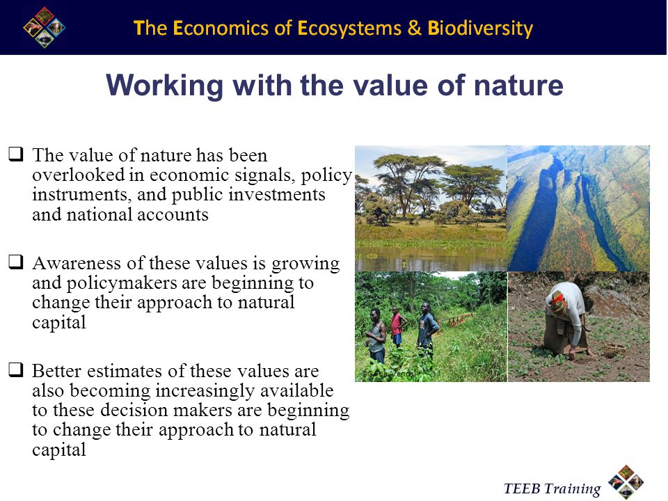 TEEB Training Working with the value of nature  The value of nature has been overlooked in economic signals, policy instruments, and public investments and national accounts  Awareness of these values is growing and policymakers are beginning to change their approach to natural capital  Better estimates of these values are also becoming increasingly available to these decision makers are beginning to change their approach to natural capital ©Grida Arendal