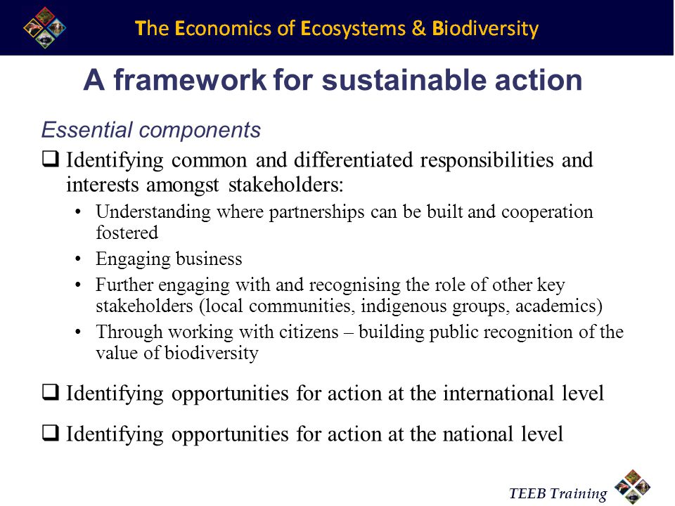 TEEB Training A framework for sustainable action Essential components  Identifying common and differentiated responsibilities and interests amongst stakeholders: Understanding where partnerships can be built and cooperation fostered Engaging business Further engaging with and recognising the role of other key stakeholders (local communities, indigenous groups, academics) Through working with citizens – building public recognition of the value of biodiversity  Identifying opportunities for action at the international level  Identifying opportunities for action at the national level