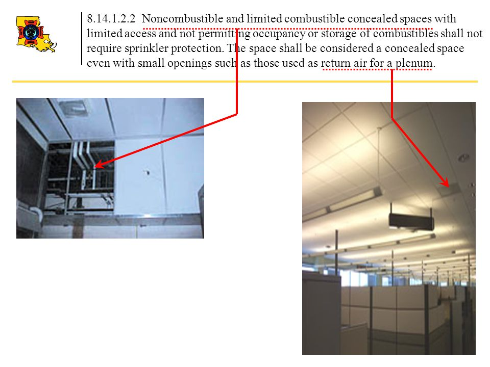 8.14.1.2.2 Noncombustible and limited combustible concealed spaces with limited access and not permitting occupancy or storage of combustibles shall n