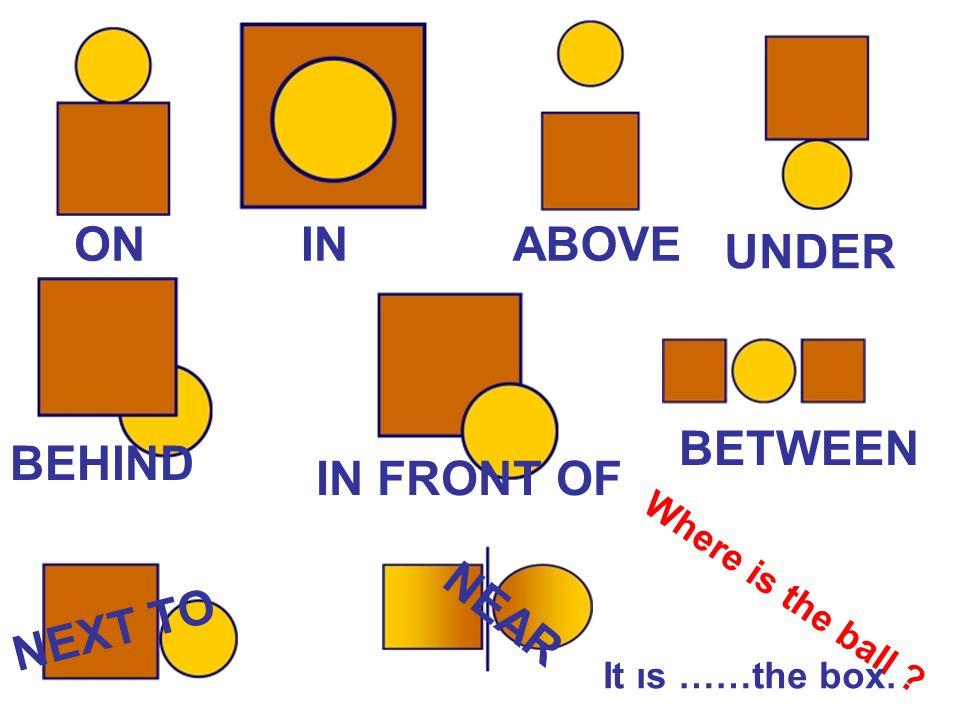 ONIN ABOVE UNDER BEHIND IN FRONT OF BETWEEN NEXT TO N E A R W h e r e i s t h e b a l l ? It ıs ……the box.