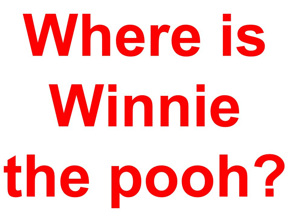 Where is Winnie the pooh.