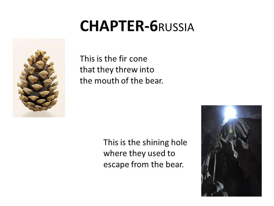 CHAPTER-6 RUSSIA This is the fir cone that they threw into the mouth of the bear.