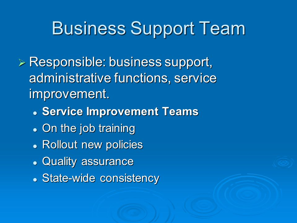 Business Support Team  Responsible: business support, administrative functions, service improvement. Service Improvement Teams Service Improvement Te