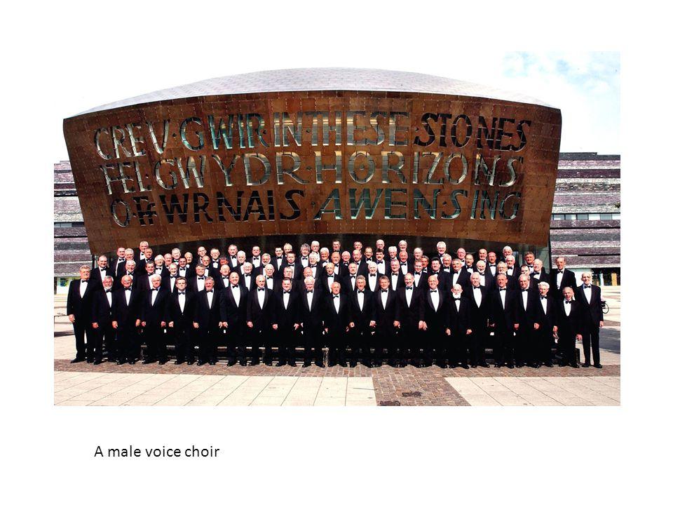 A male voice choir