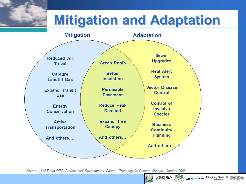 Mitigation and Adaptation Sewer Upgrades Heat Alert System Vector Disease Control Control of Invasive Species Business Continuity Planning And others… Reduced Air Travel Capture Landfill Gas Expand Transit Use Energy Conservation Active Transportation And others….
