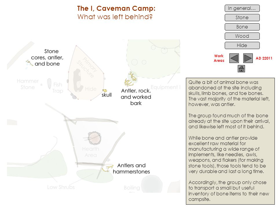 Work Areas In general… Stone Bone Wood The I, Caveman Camp: What was left behind.