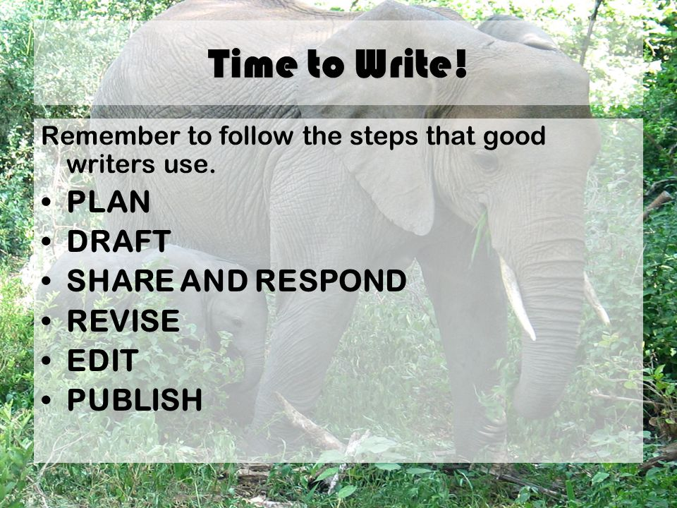 Time to Write. Remember to follow the steps that good writers use.