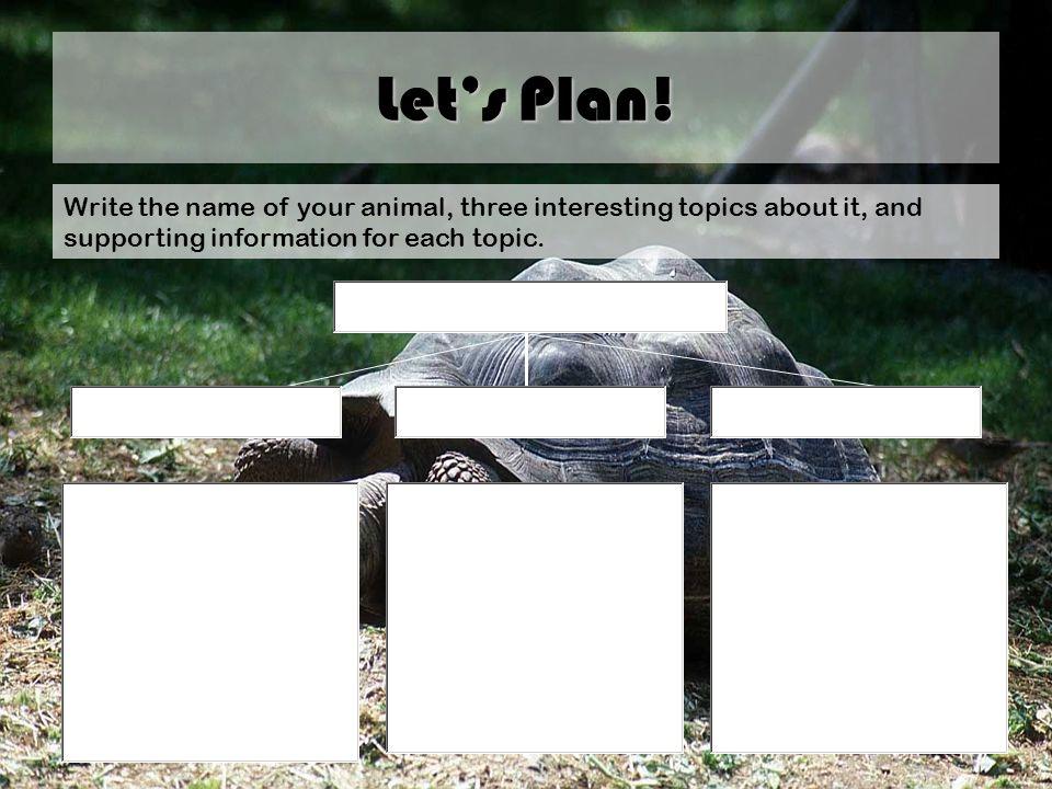 Let's Plan.
