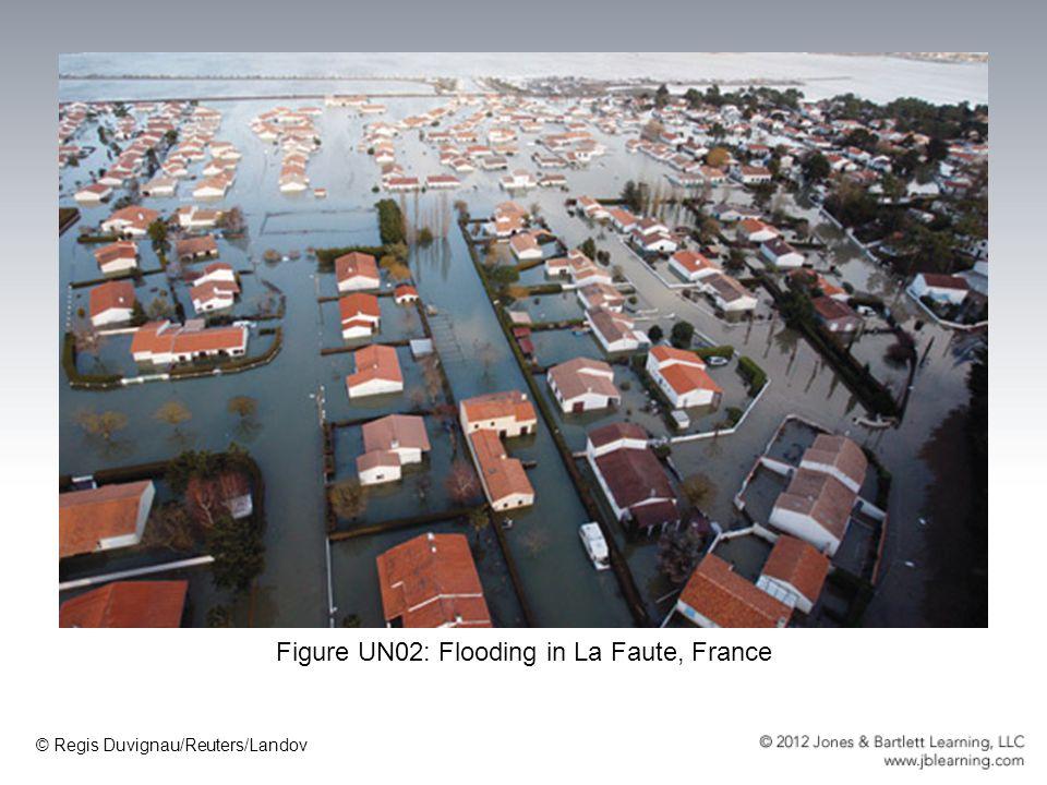 Figure UN02: Flooding in La Faute, France © Regis Duvignau/Reuters/Landov