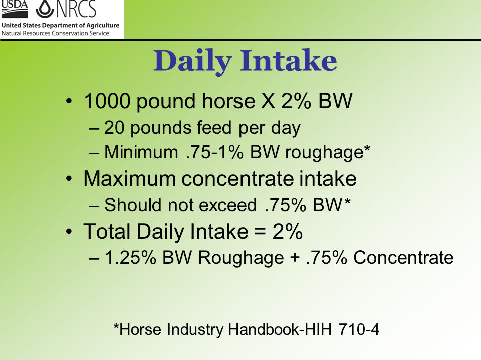 Daily Intake 1000 pound horse X 2% BW –20 pounds feed per day –Minimum.75-1% BW roughage* Maximum concentrate intake –Should not exceed.75% BW* Total