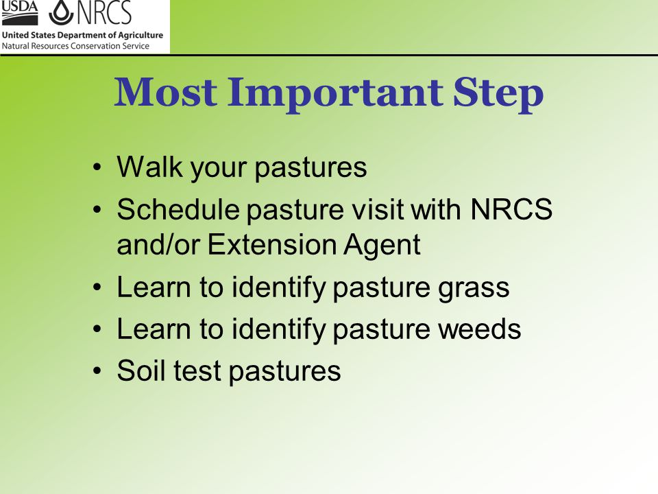 Most Important Step Walk your pastures Schedule pasture visit with NRCS and/or Extension Agent Learn to identify pasture grass Learn to identify pastu