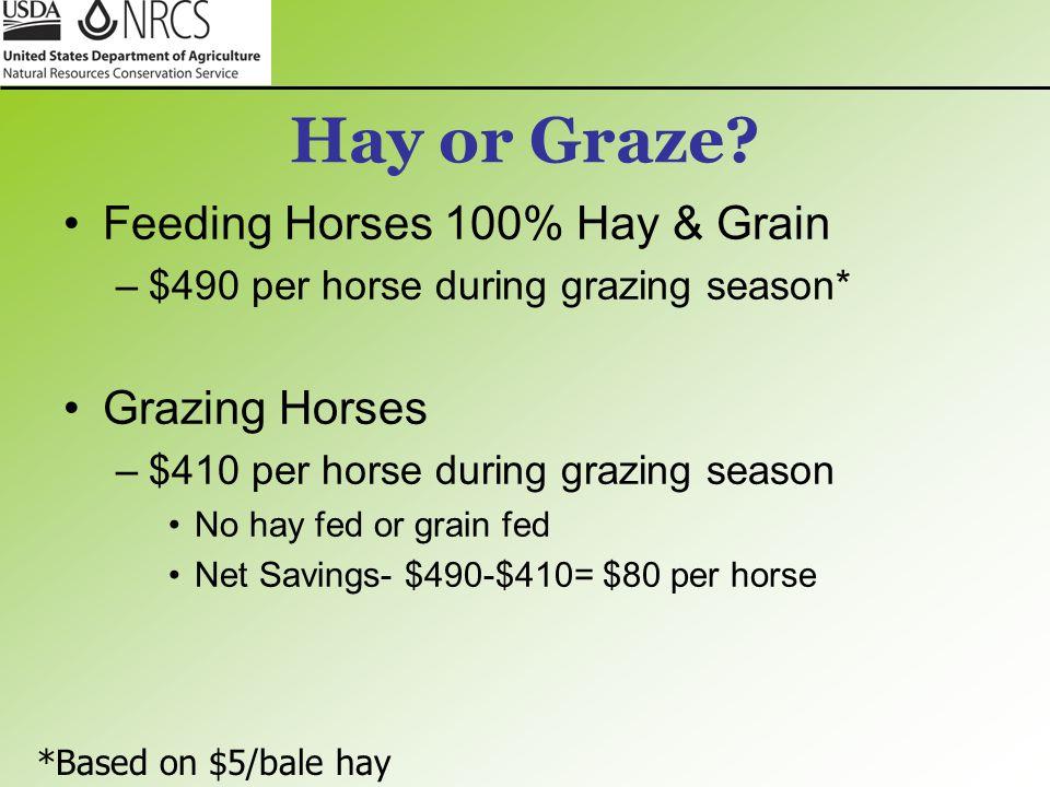 Hay or Graze.