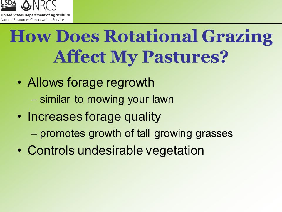 How Does Rotational Grazing Affect My Pastures? Allows forage regrowth –similar to mowing your lawn Increases forage quality –promotes growth of tall