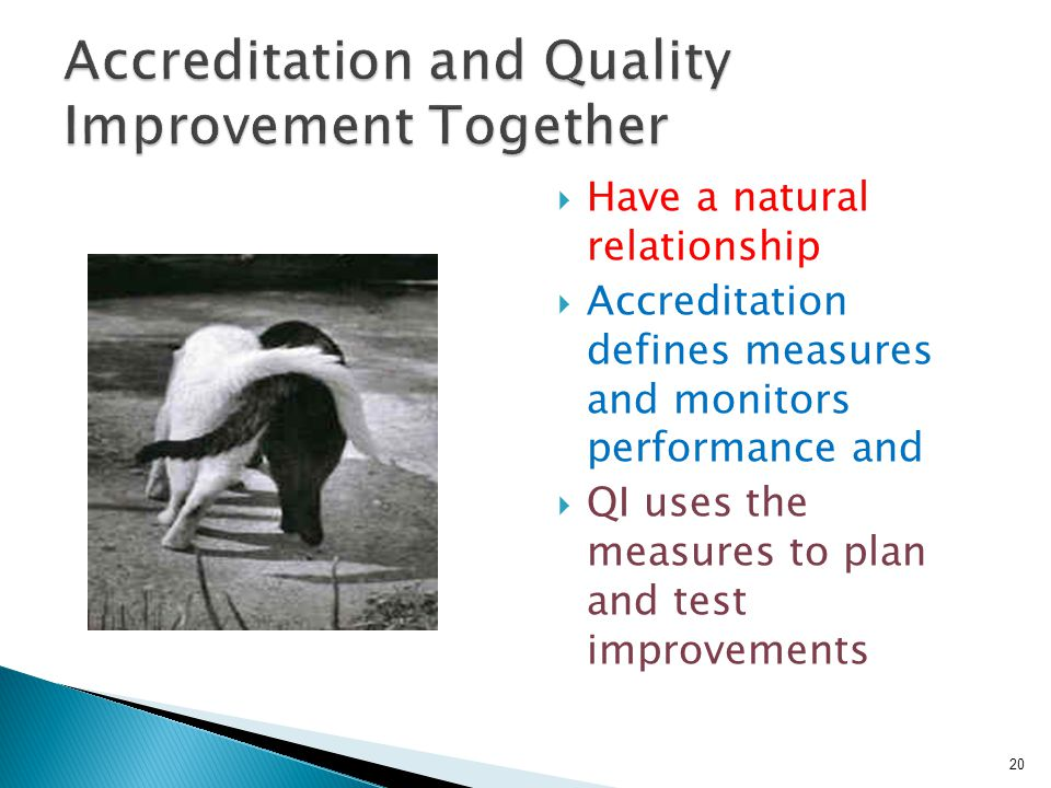  Have a natural relationship  Accreditation defines measures and monitors performance and  QI uses the measures to plan and test improvements 20