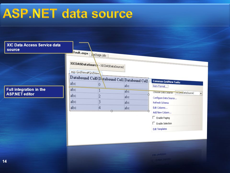 14 XIC Data Access Service data source Full integration in the ASP.NET editor