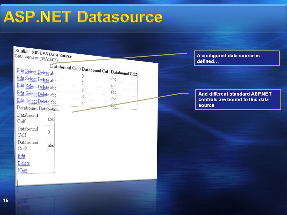 15 A configured data source is defined… And different standard ASP.NET controls are bound to this data source