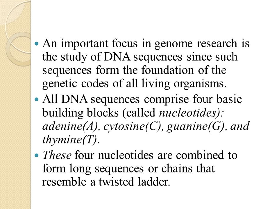 An important focus in genome research is the study of DNA sequences since such sequences form the foundation of the genetic codes of all living organisms.
