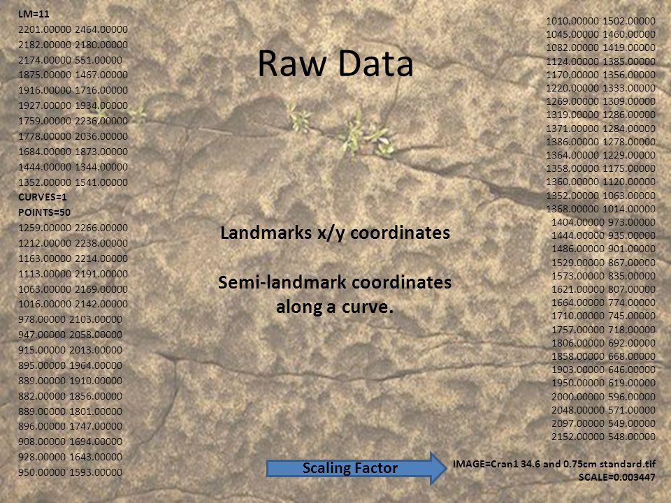 Raw Data LM=11 2201.00000 2464.00000 2182.00000 2180.00000 2174.00000 551.00000 1875.00000 1467.00000 1916.00000 1716.00000 1927.00000 1934.00000 1759