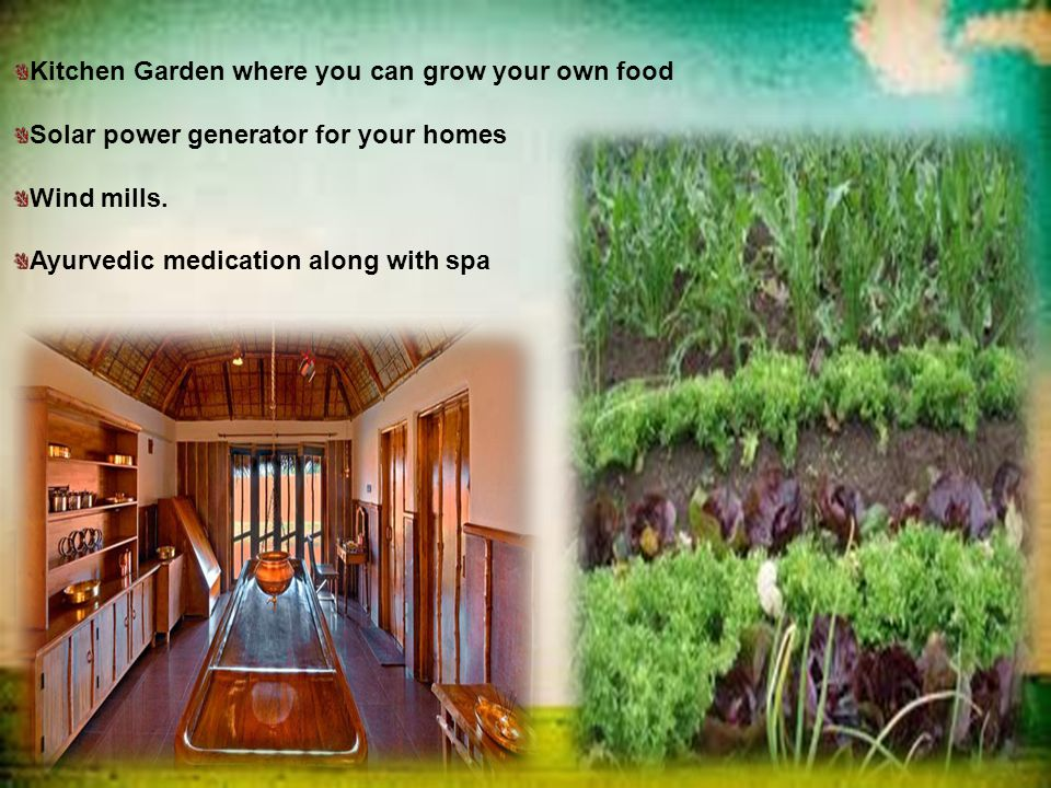 Kitchen Garden where you can grow your own food Solar power generator for your homes Wind mills.